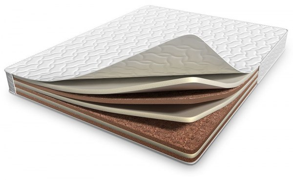Sandwich Cocos / Latex 522